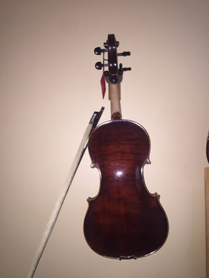 Viola Gibson 15 1/2 for Sale in Derwood, MD
