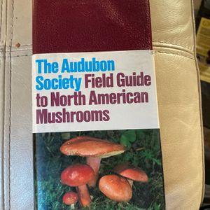 North American Mushrooms for Sale in Orange, CA