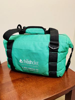 Light Green Portable Lunch Cooler for Sale in Springfield, VA