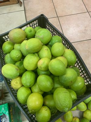 Limes for Sale in Fort Pierce, FL