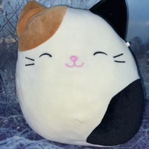 """Squishmallow Cat Cameron 8"""" for Sale in Paramount, CA"""