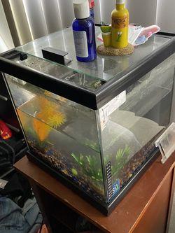 5 Gallon Fish Tank for Sale in Anaheim,  CA