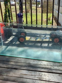 Giant Fish Tank Or Reptile Tank for Sale in Austin,  TX