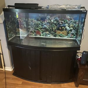 75 Gallons Fish Tank for Sale in Valrico, FL