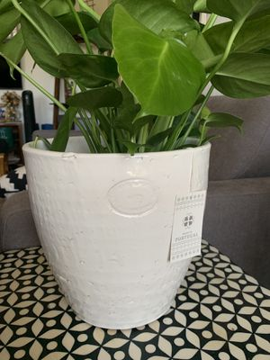 """9"""" Large White Plant Pot for Sale in San Diego, CA"""