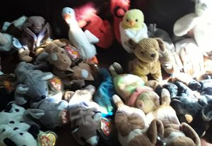 Ty beanie babies for Sale in Mission Viejo, CA