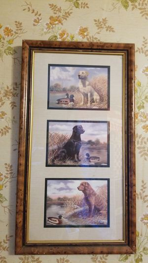 N/a. Pics in frame of dogs for Sale in Marquette, MI