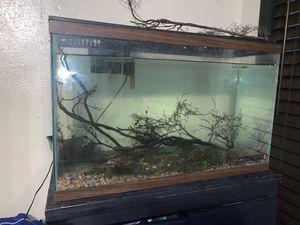 25 gallon fish tank aquarium for Sale in Dallas, TX