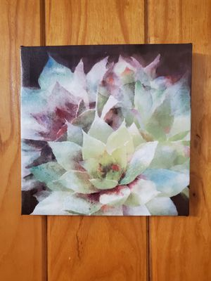 Succulent Picture for Sale in Hermitage, TN