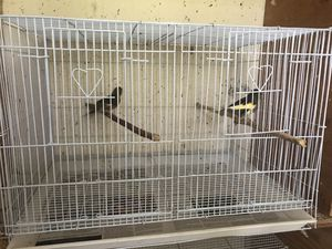 Two canary white cage for Sale in Sterling, VA