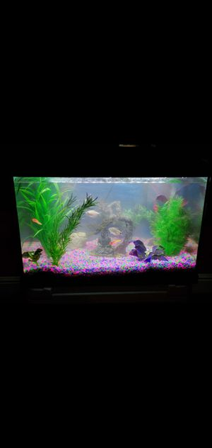 20gallon fish tank with lots of fish and decorations for Sale in Houston, TX