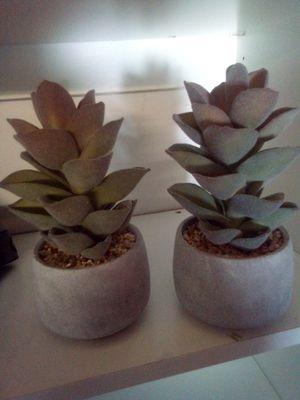 3 fake decorative small succulent plants for Sale in Mission Viejo, CA