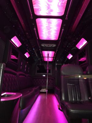 Limousine party bus rentals for Sale in Tampa, FL