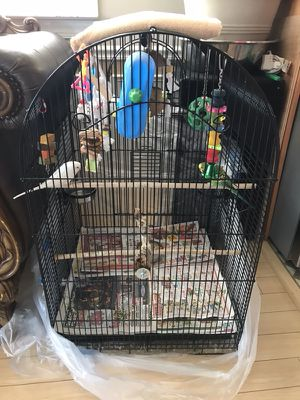 Bird cage for Sale in Annapolis, MD