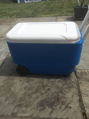 Cooler for Sale in Horsham, PA
