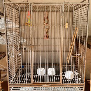 6ft BIRD /PARROT Cage for Sale in Orlando, FL