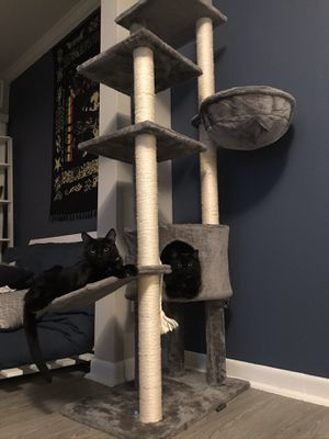 CAT TREE / POST for Sale in Houston, TX