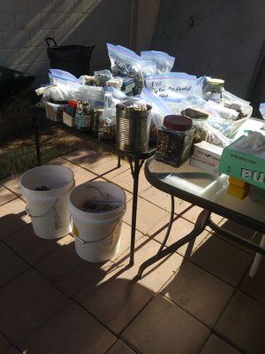 reloading 45 acp. cleaned brass shells for Sale in Phoenix, AZ