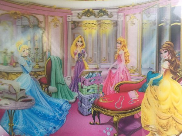 Holographic Disney Princess Picture