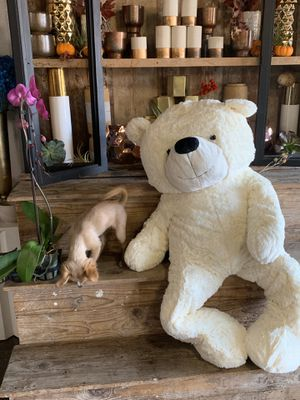 Giant plus Teddy bear super soft SALE for Sale in Los Angeles, CA