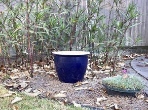 "Large Cobalt Blue Indoor/Outdoor Flower Pot Planter 12"" Tall 15"" in Diameter for Sale in Chesapeake, VA"