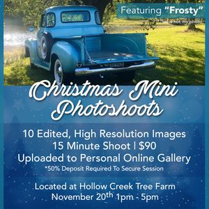 Christmas Mini Photoshoots for Sale in Gilbert, SC