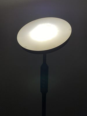 Daylight Floor Lamp for Sale in New York, NY