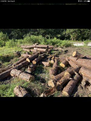 Free firewood wood for Sale in Orlando, FL