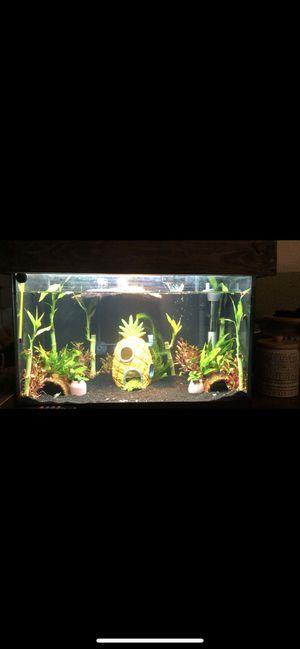 10 gallon fish tank for Sale in Menifee, CA