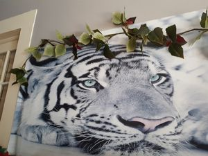 Huge 3 d white tiger needs to be put in frame canvas at paid 75.00 for Sale in Alexandria, LA