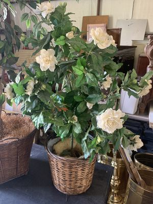 Rose Plant Fake for Sale in Wimberley, TX
