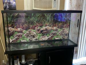 55 gallon fish tank plus stand for Sale in Bolingbrook, IL