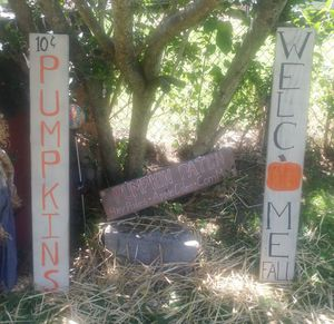 Set of 3 Hand Painted Fall Signs for Sale in Knoxville, TN