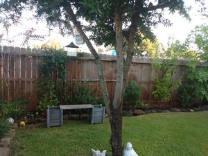 Lawn mower .we work in ''channelview. Atascosita. Baytown. hombo.galina park.crosby for Sale in Houston, TX