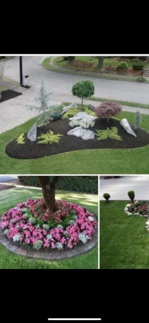Sistema de sprinklers and landscape 🌵☘️ for Sale in Fontana, CA