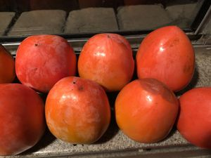 Persimmons for Sale in Modesto, CA