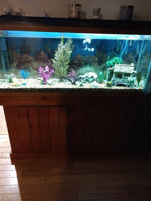 Fish tank and supplies for Sale in Galloway, OH