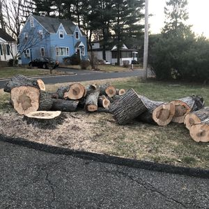 Free Wood for Sale in Trumbull, CT