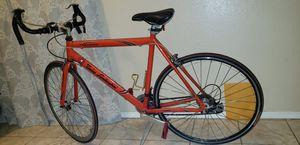 Lambo bike * 700cm wheels ROAD BIKE $175 FIRM. for Sale in Lakewood, CA