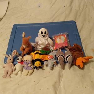 Ty Dolls Beanie Babies for Sale in Memphis, TN