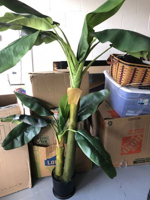 Fake plant for Sale in Saint Cloud, FL