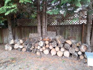 Fire Logs for Sale in Renton, WA
