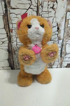 FurReal Friends Interactive Orange Kitty Cat Playful Realistic Kitten Daisy for Sale in Denver,  CO