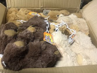 case of 48 stuffed bears for Sale in Queens,  NY