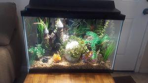 Complete Aquarium for Sale in Antioch, CA