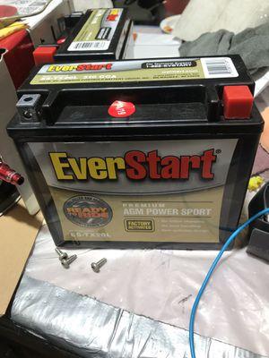 EverStart ES-TX20L for Sale in Walcott, IA