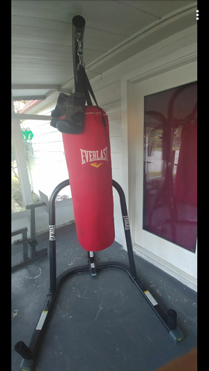 Everlast Punching bag for Sale in Lakeland, FL