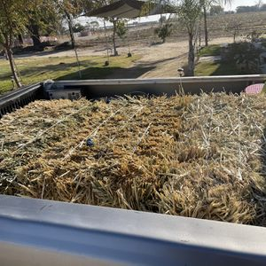 3 Bailes Of Straw for Sale in Sanger, CA