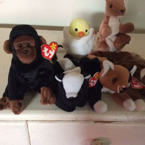Ty beanie babies for Sale in Tacoma, WA