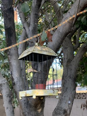 Candle holders bird cages for Sale in Los Alamitos, CA